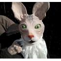 Atelier: Marionnettes en Matière Naturelle - école